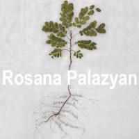 rioecultura : EXPO Rosana Palazyan : Casa França-Brasil