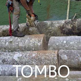 rioecultura : EXPO Tombo [RODRIGO BRAGA] : Casa Fran�a-Brasil