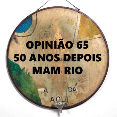 rioecultura : EXPO Opini�o 65 � 50 anos depois : Museu de Arte Moderna do Rio de Janeiro (MAM RJ)